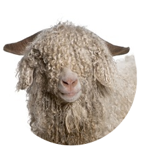 Aux Doigts de Fée laine-angora